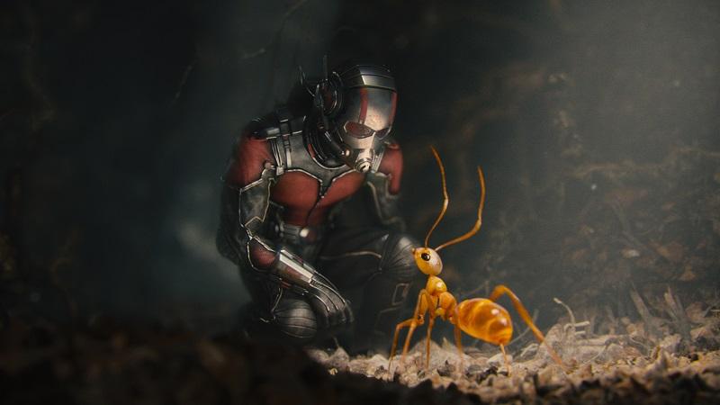 Tudo o que você precisa saber sobre o Homem-Formiga
